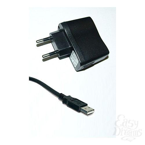 Фотография 1:  Адаптер СЗУ c USB разъмом( для вибромассажеров)