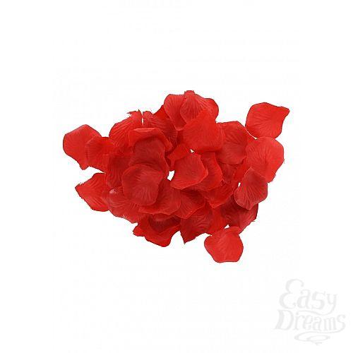 Фотография 6 Toy Joy  Игровой набор Amazing Pleasure Sex Toy Kit